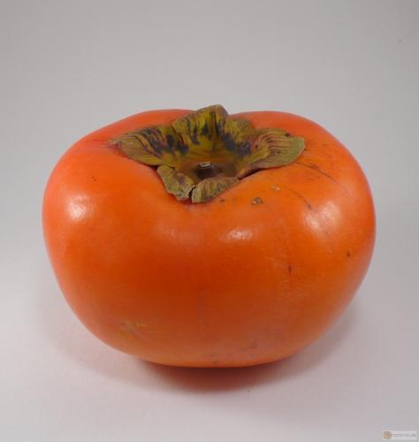 Diospyros kaki -- Kaki-Frucht